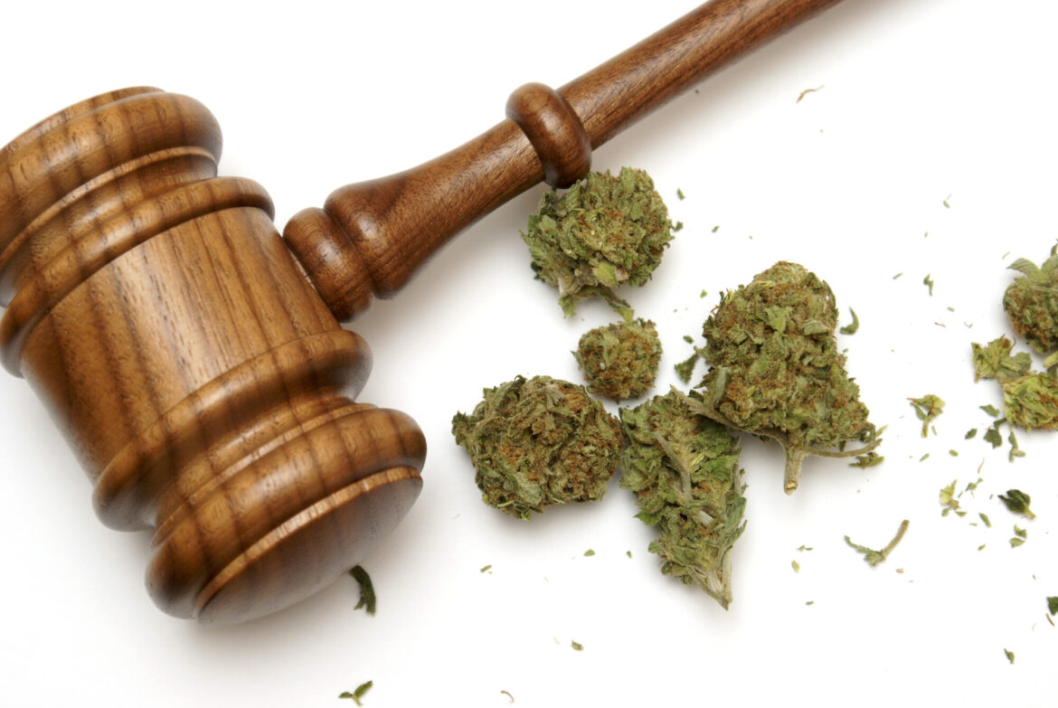 Are you hoping to help legalize marijuana but aren't sure how to get your voice heard? Click here to learn how to properly vote.